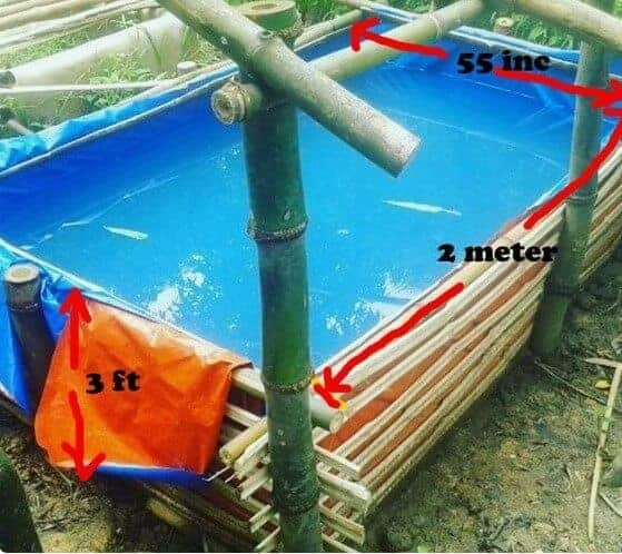 Koi pond construction guide will make you successfully for Koi pond construction guide