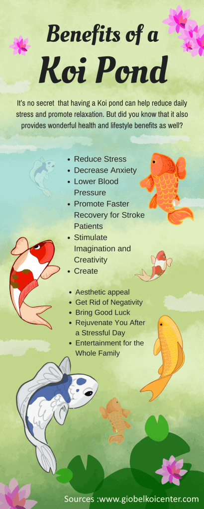 relaxing hobbies koi fish therapeutic effects
