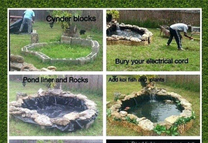 building a koi pond