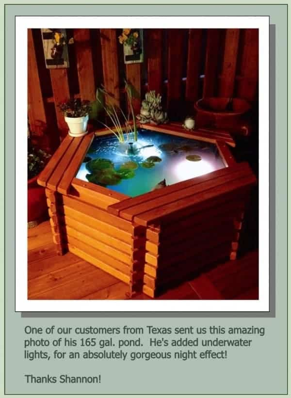 indoor koi pond for sale