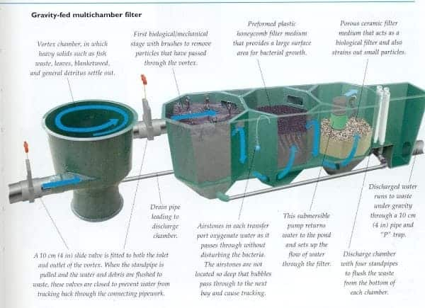 Koi pond filter understanding koi pond filter system best for Small pond filter design