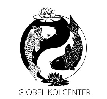 About us giobel koi center logo