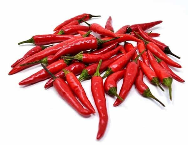 chilli pepper for koi food