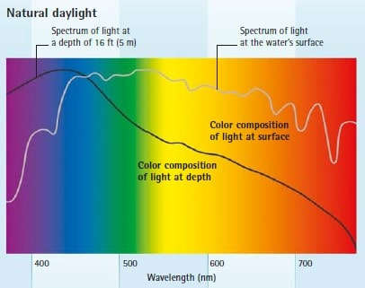 natural daylight spectrum