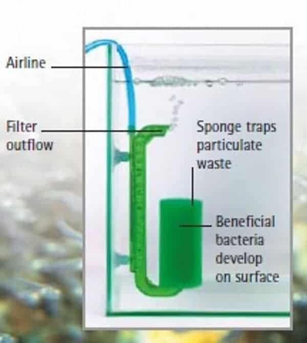 airlift pump filter