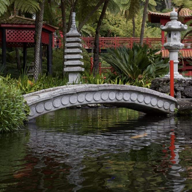 koi ponds ideas