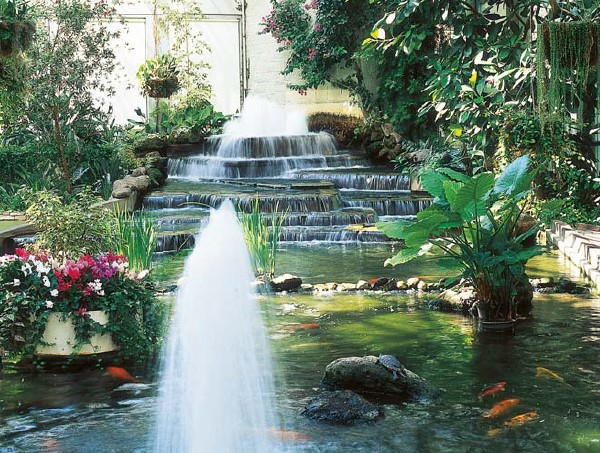 koi pond filter and pump fountain