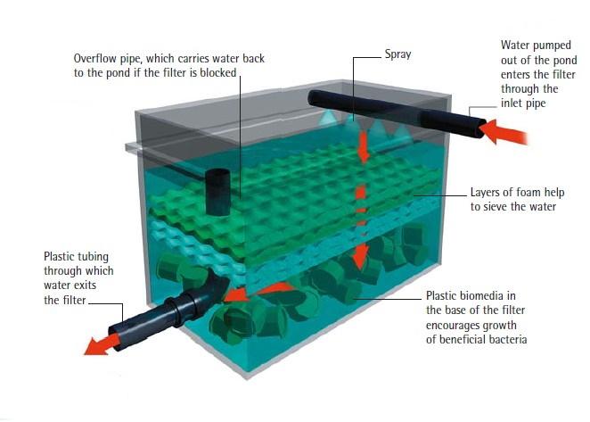 koi pond filter and pump koi pond filter chamber