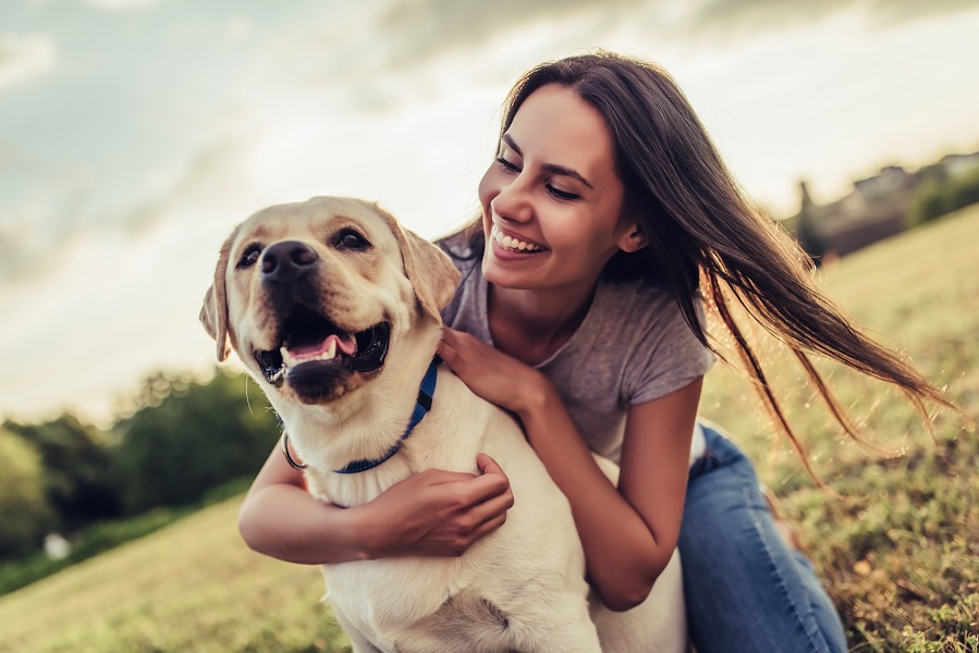 5 Effective Ways To Boost Your Dog's Health